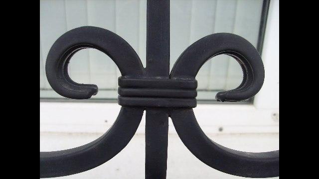 Завитки ограды, соединенные тремя кольцами.